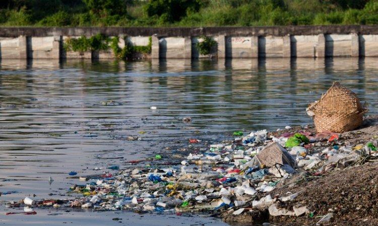 Bureau d'étude en environnement Toulouse